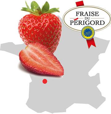 L'Europe signe les produits de ses terroirs dont la Fraise du Périgord