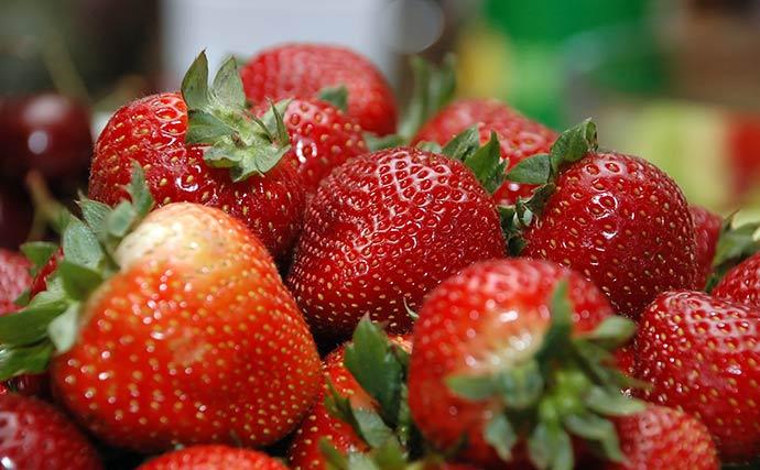 Gros plan sur des fraises