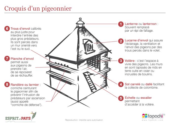 Croquis des différents éléments architecturaux d'un pigeonnier – Source : Patrimoine de pays en Périgord, Conseil d'Architecture d'Urbanisme et d'Environnement, CAUE Dordogne, 2002
